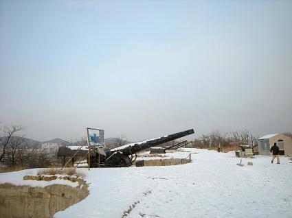 1895式直径254mm大砲