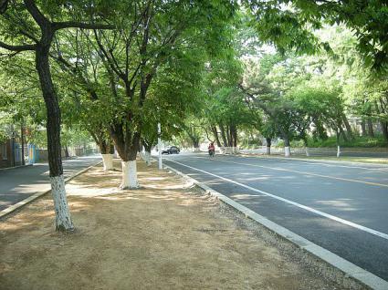 中央の道。天皇、皇族のために作られた道
