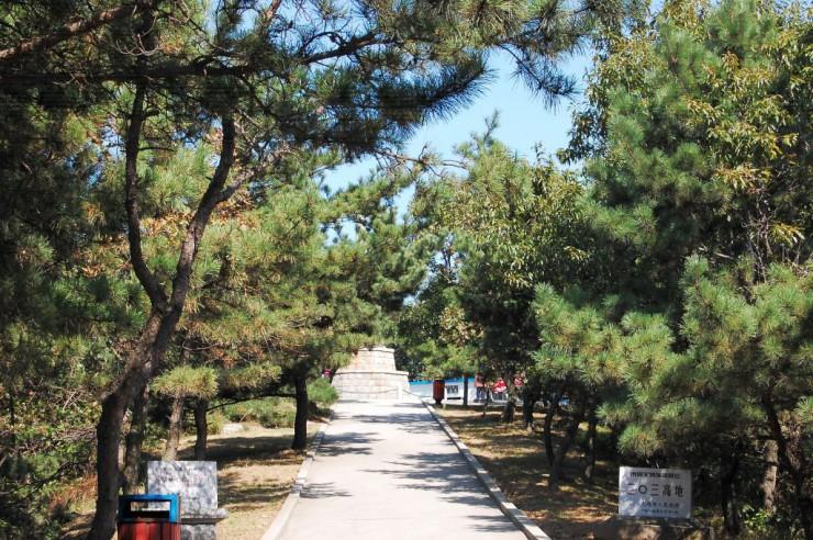 慰霊塔へ続く一本道の松林