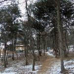 本格的な山道を40分ほどかけて登る