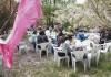 桜の花びらが舞う中で食事を楽しむ参加者たち