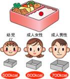 お弁当箱の大きさとカロリーの関係